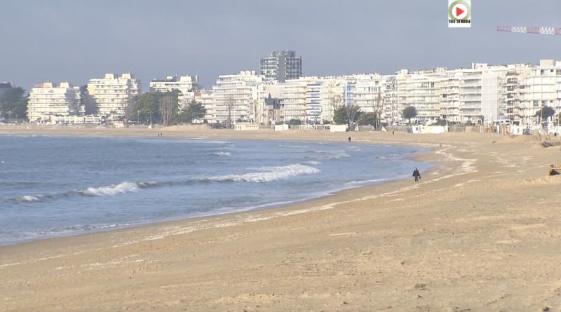 Brittany: La Baule Sea, Dogs and Sun