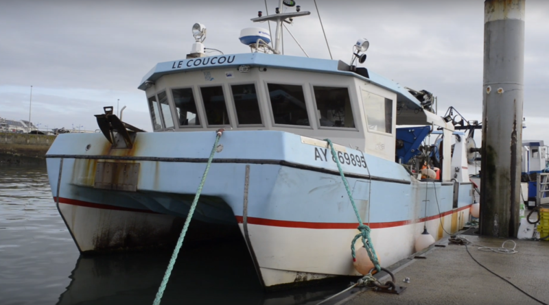 Quiberon sardine-fishing port - Quiberon TV world